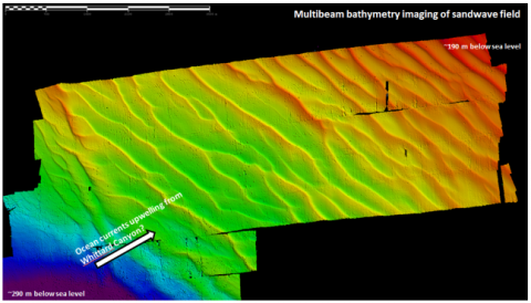 Multibeam image off the sandwaves that we have found
